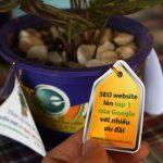 Kiếm tiền từ sticker quảng cáo treo trên cây